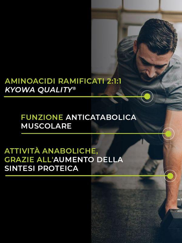 BCAA 2:1:1 metabolismo energetico 60 mg
